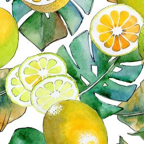 Lemon Tropics