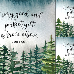 1 blanket + 2 loveys: every good and perfect gift is from above // john 1:17