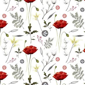 Poppy Botanical