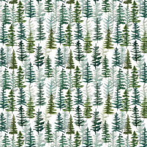 firs and pines // small