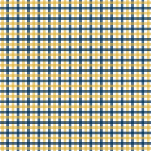 Gingham - Blue and Gold, Small