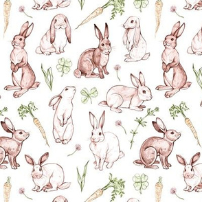 Rabbit Sketches in Color