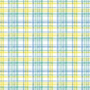 (extra small scale) Easter Watercolor Plaid with mint C20BS