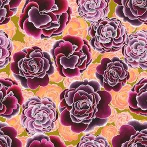 Primrose Garden trendy
