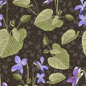 Sweet violette Jugendstil