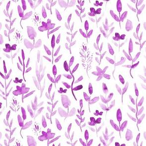 Plum meadow - watercolor wild flowers p255