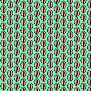 Cowries, green