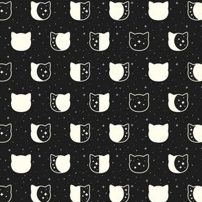 Cat Moon Phases