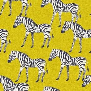 zebra fabric - zebra wallpaper, zebra print, animal print, african fabric, african print, home dec fabric - limon