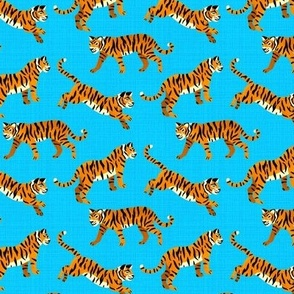 Bengal Tigers - Electric Blue (Small Version)