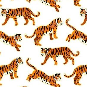 Bengal Tigers - White (Medium Version)