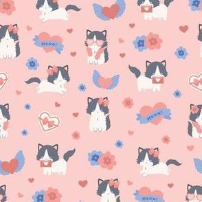 Ragdoll Cat Valentines Day