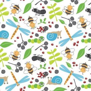 Bug Kingdom