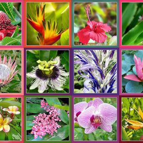Tropical Florals Banner