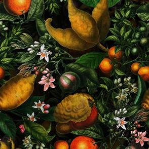"""14"""" Vintage Citrus Fruit Pattern"""