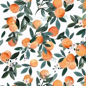 Dear Clementine white oranges M
