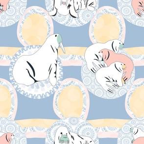 zebra sharks sea life copy