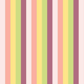 Macaroon Stripes in Variegated Pastels Tangerine - Raspberry - Lemon - Lime