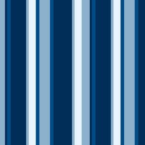 Classic Blue Stripe 2020 Ciufo