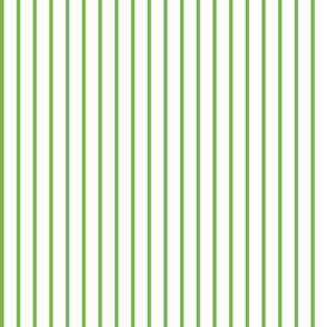 PIN STRIPE green