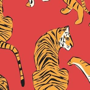 Tigers 005