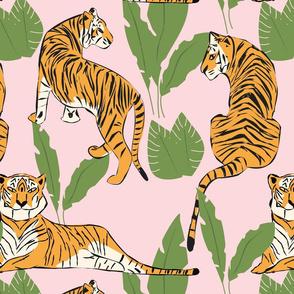 Tigers 008