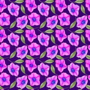 PurplePinkfloral