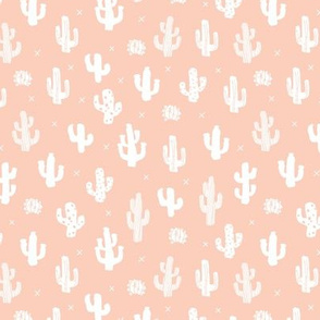 Raw western indian summer cactus garden soft nursery pale peach