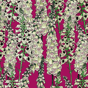 Large Scale Berry Foxglove