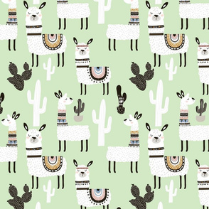 Llamas in Desert - GREEN