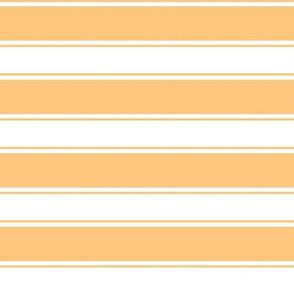 OrangeCicle-Stripe 2x2.5