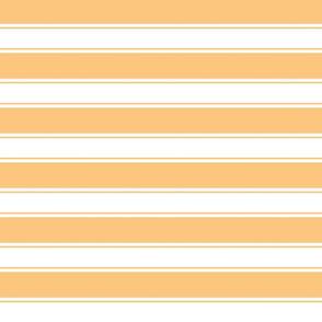 OrangeCicle-Stripe 1.6x1.3