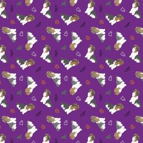 Tiny Biewer terriers - Halloween