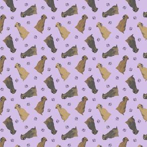 Tiny Border Terriers - purple