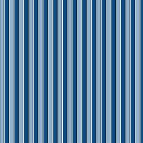Classic Blue Stripe