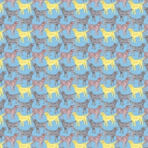 Small Colorful Labrador sketches - blue