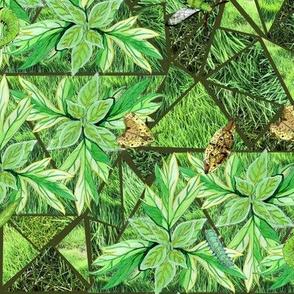 Green Moths in Grass Medium