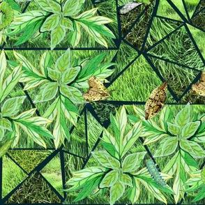 Green Moths in Grass Dark