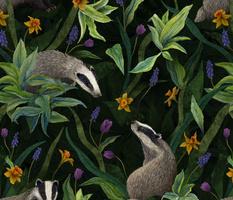 Spring Badgers