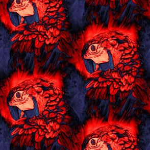 PARROT HEAD 3 STAGGERED INDIGO RED TROPICAL PSMGE
