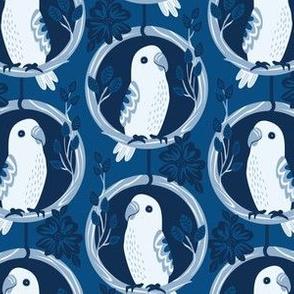 Little Blue Lovebird