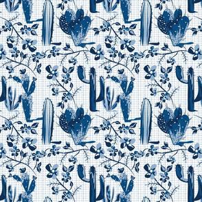 Blue Cactus Blooms
