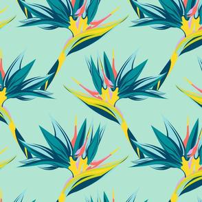 Bird of Paradise - Blue Seafoam