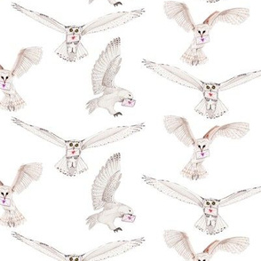 Snow owls with love letters on white