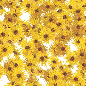 Van Gogh Sunflowers full on white