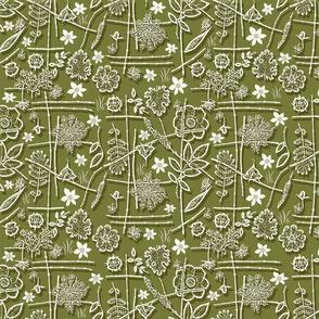 asian garden moss