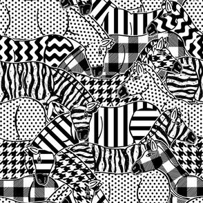 crazy zebra herd