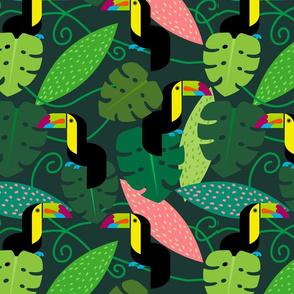 ToucanJungle