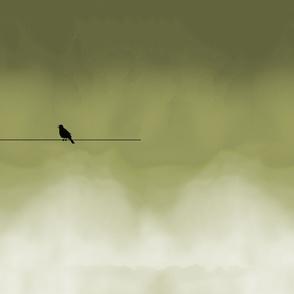 mtm 152cm x 1meter, sing bird, sunset