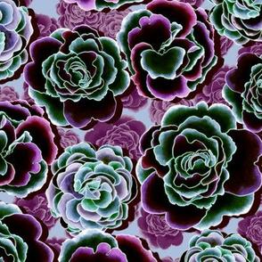 Primrose Garden funky violet